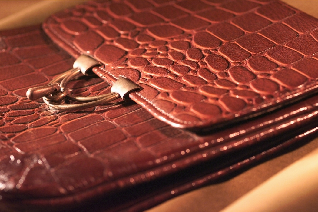 Alligator Skin Briefcase