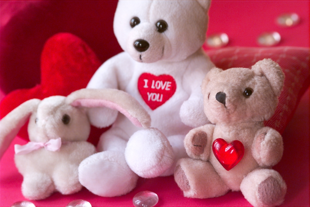 Valentines Day Teddy Bears Love You