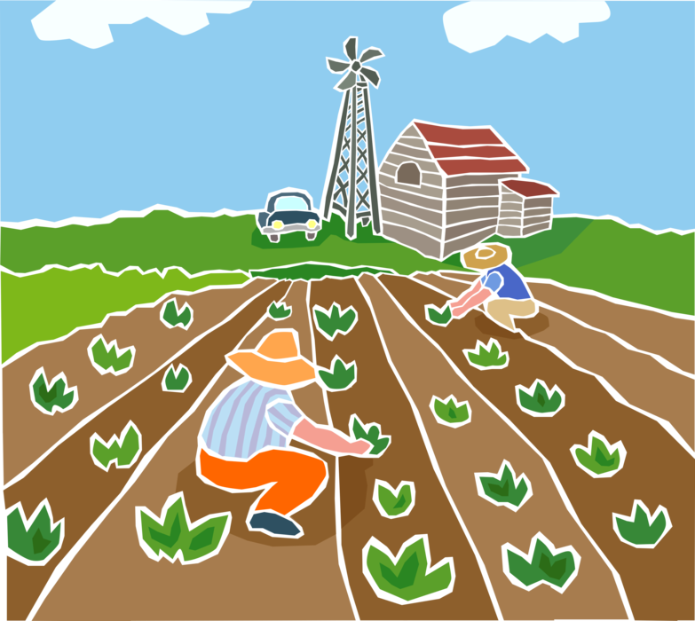 Vector Illustration of Farmers Planting Vegetable Garden Crops with Windmill and Barn