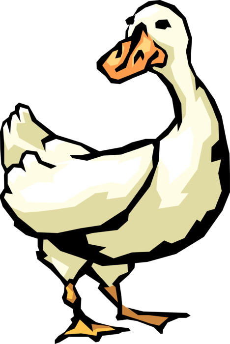 Vector Illustration of White Waterfowl Duck Bird