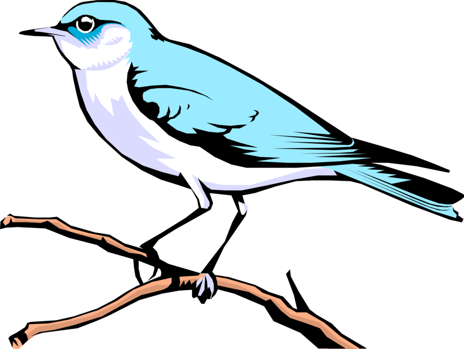 Vector Illustration of Feathered Vertebrate Mountain Blue Bird