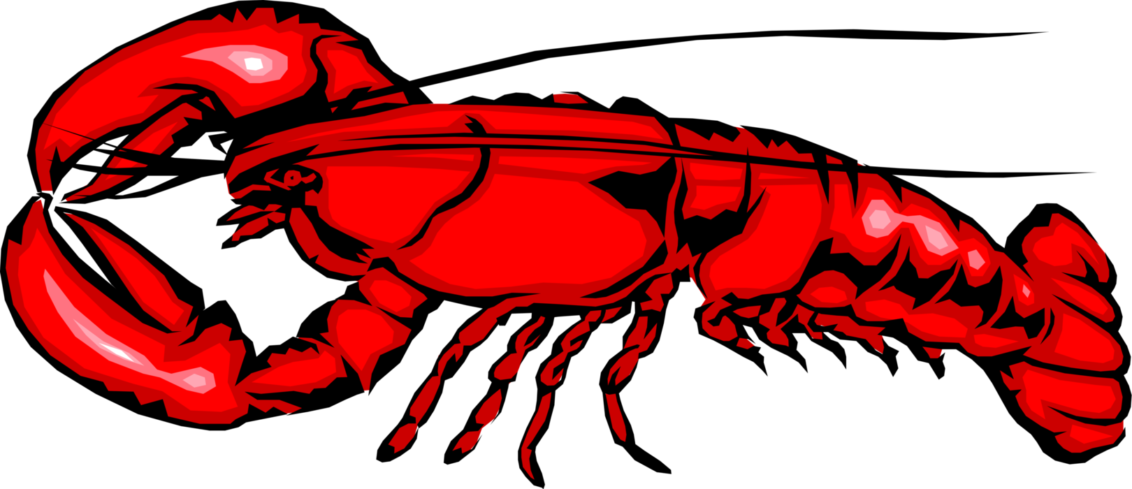 Vector Illustration of Clawed Lobster Shellfish Marine Crustacean Seafood