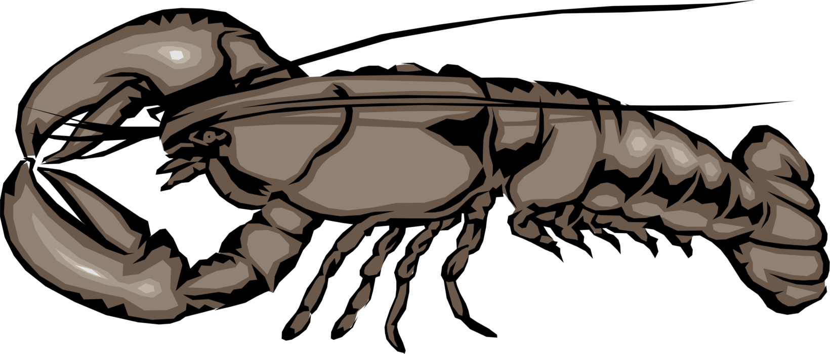 Vector Illustration of Clawed Lobster Shellfish Marine Seafood Crustacean