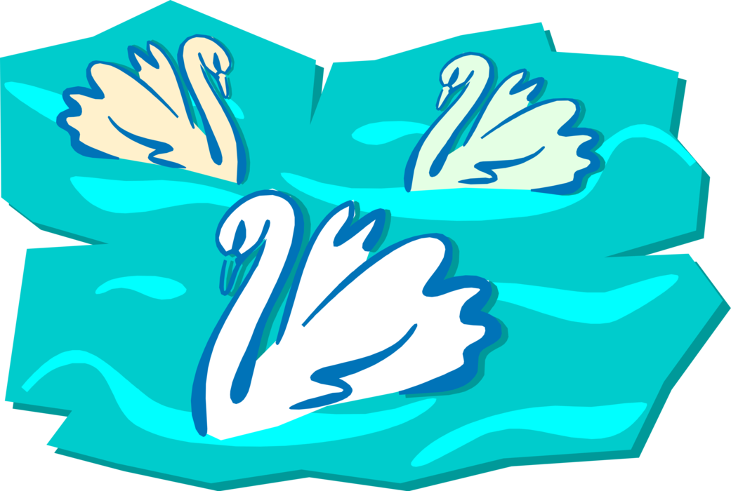 Vector Illustration of Three White Mute Swans Swimming