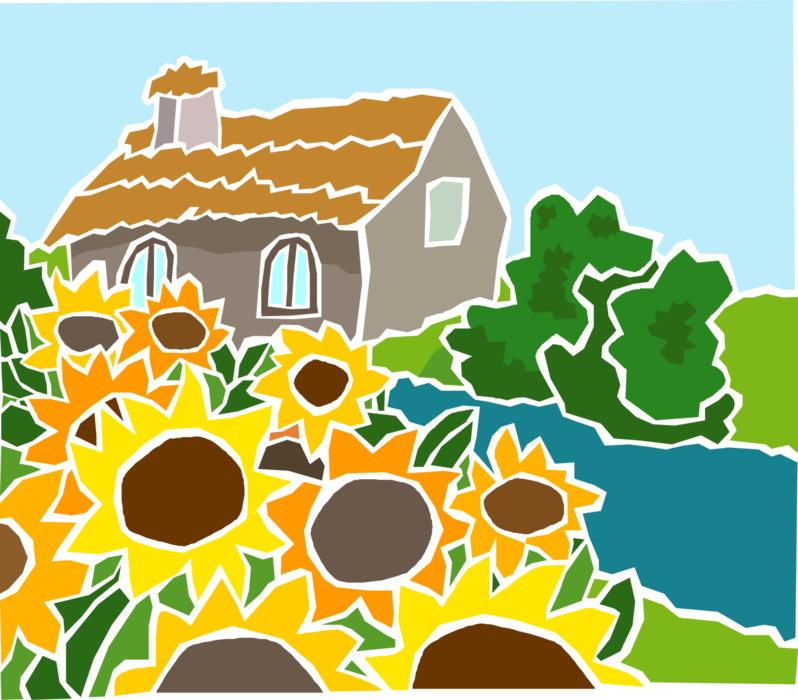 Vector Illustration of Sunflowers with Country Cottage