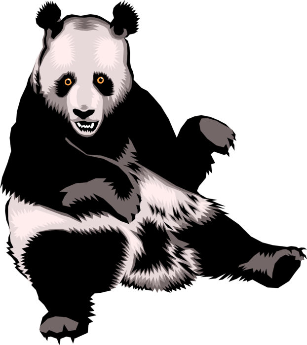 Vector Illustration of Chinese Giant Panda Bear Endangered Species Bear