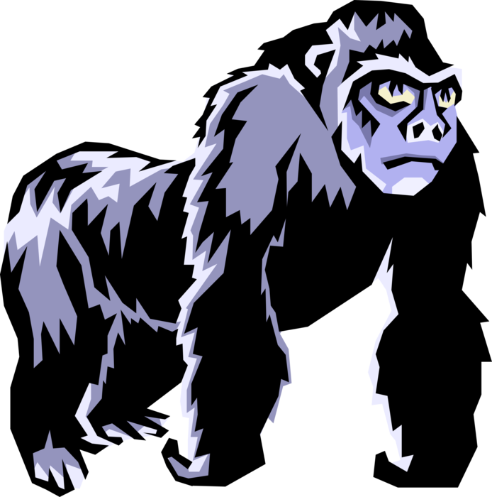 Vector Illustration of Herbivorous Ape Silverback Gorilla Primate