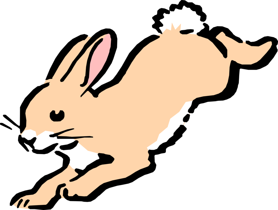 Vector Illustration of Cartoon Rabbit Hops