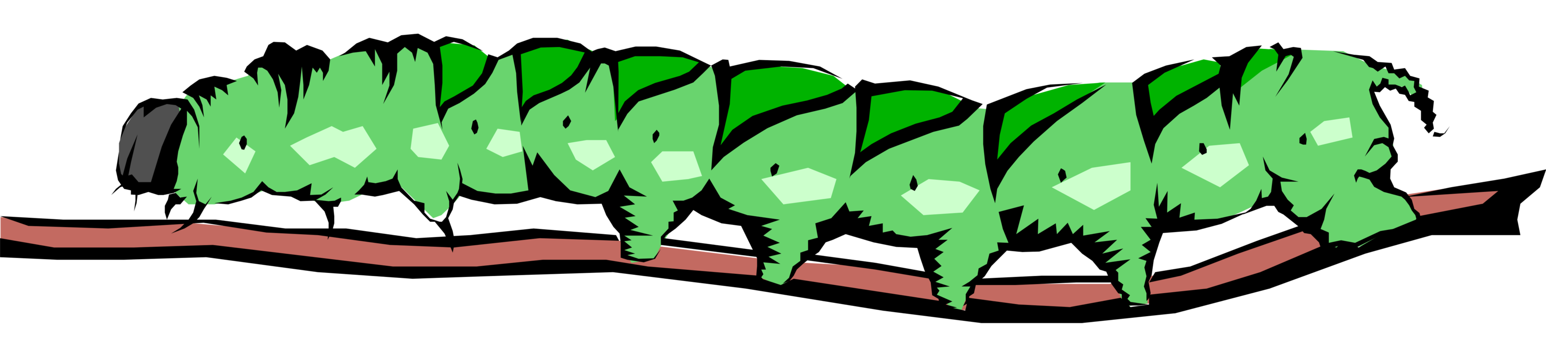Vector Illustration of Green Caterpillar Insect Crawls Along Branch