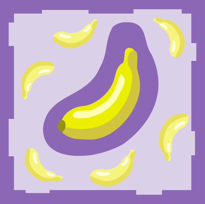 Vector Illustration of Soft, Sweet, Dessert Banana Edible Fruit