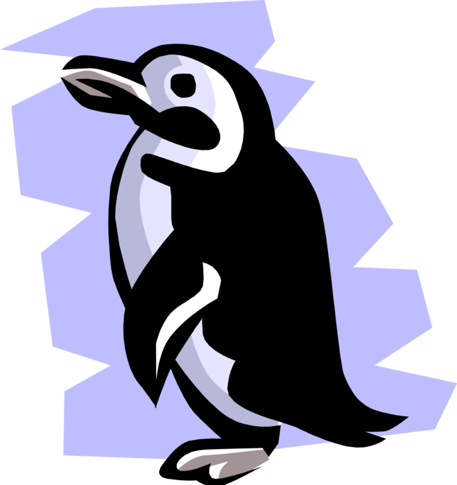 Vector Illustration of Southern Hemisphere Antarctic Polar Region Penguin Flightless Aquatic Bird