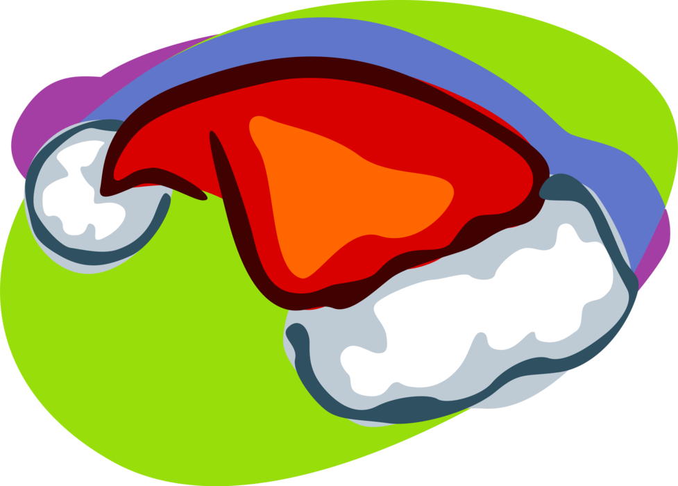 Vector Illustration of Santa's Hat at Christmas