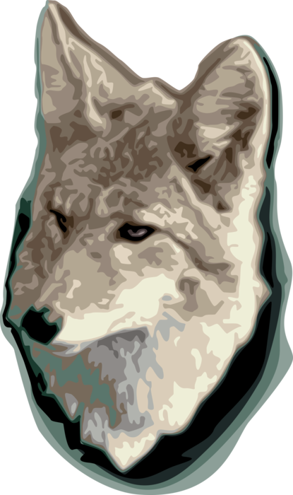 Vector Illustration of Silver Fox Omnivorous Mammal