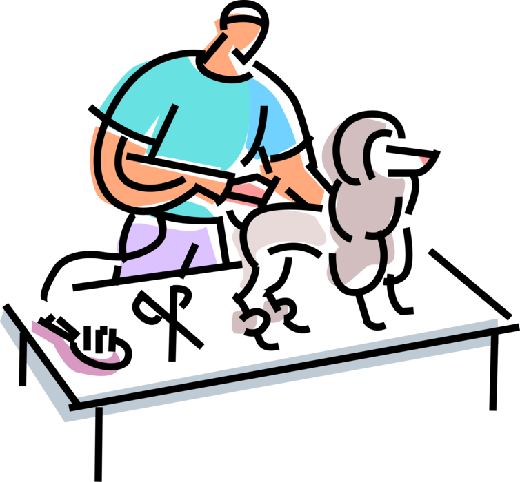 Vector Illustration of Pet Grooming Poodle Gets Hair Cut Trim with Scissors at Doggie Salon