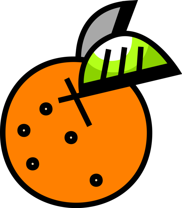 Vector Illustration of Orange Citrus Fruit with Leaf